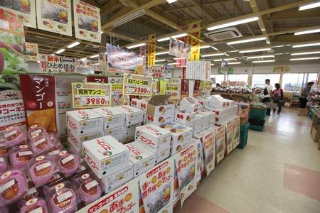 道の駅 豊崎・店内(横):No.0187