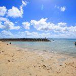 浜ふるさとビーチ(横):No.0462