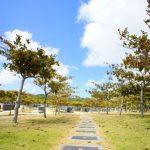 平和記念公園・平和の礎への道(縦):No.0832