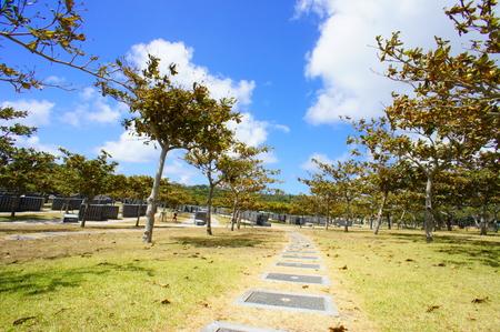 平和記念公園・平和の礎への道(横):No.0831