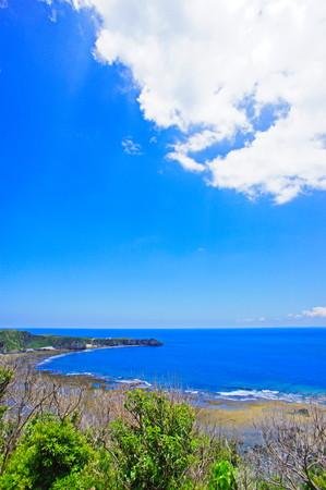 ヤンバルクイナ展望台から見える海(縦):No.0879