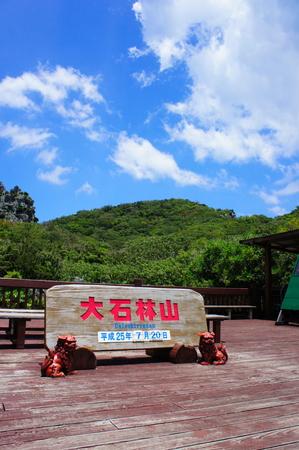 大石林山(縦):No.0901