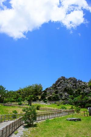大石林山(縦):No.0903