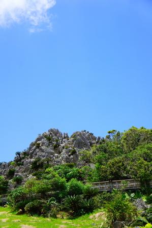 大石林山(縦):No.0905