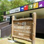やんばる野生生物保護センター(横):No.0884