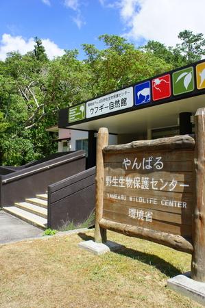 やんばる野生生物保護センター(縦):No.0885