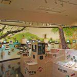やんばる野生生物保護センター・コンテンツゾーン(縦):No.0889