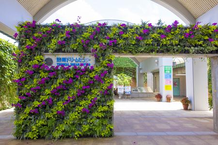 熱帯ドリームセンター・入口付近(横):No.1184
