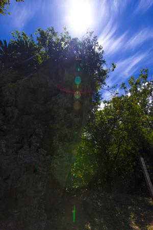 多幸山のフェーレー岩(縦):No.1268