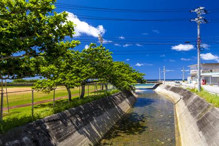 旧大宜味村役場庁舎 付近の川(横):No.1104