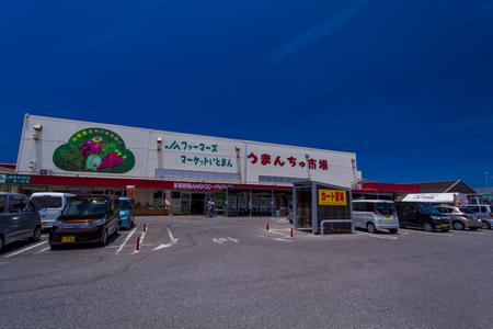 道の駅いとまん うまんちゅ市場・外観(横):No.1720