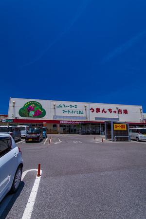 道の駅いとまん うまんちゅ市場・外観(縦):No.1721