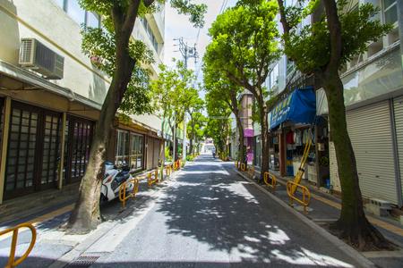 浮島通り(横):No.1545