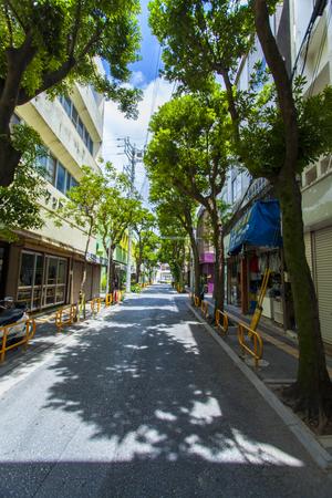 浮島通り(縦):No.1546