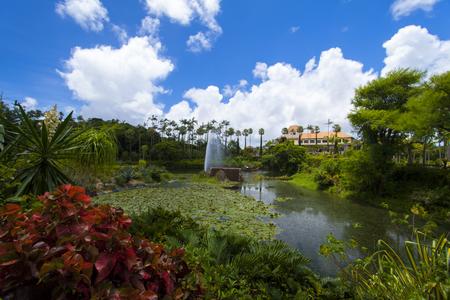 東南植物楽園・繁栄の湖(横):No.1856