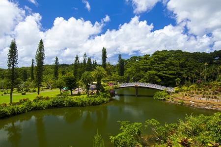 東南植物楽園・めぐりあいの湖&語らいの橋(横):No.1857