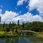 東南植物楽園・めぐりあいの湖&語らいの橋(縦):No.1858
