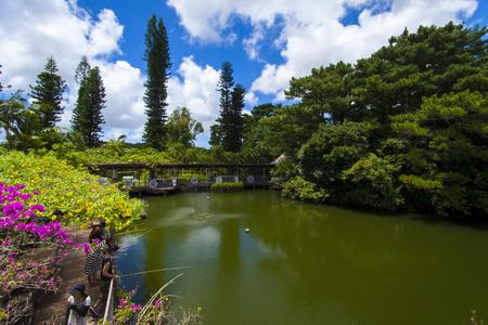 東南植物楽園・めぐりあいの湖(横):No.1861