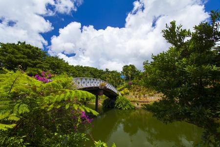 東南植物楽園・めぐりあいの湖&語らいの橋(横):No.1864