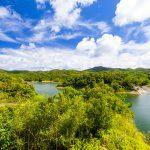 辺野喜ダム・ダム湖と周辺の森(横):No.2134