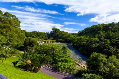 安波ダム・遊歩道とダム周辺の森(横):No.2156