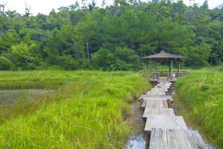 漢那ダム・湖畔公園(横):No.2242