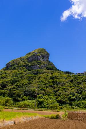 城山(伊江島タッチュー)と畑(縦):No.2414