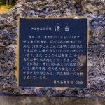 湧出・案内板(横):No.2602