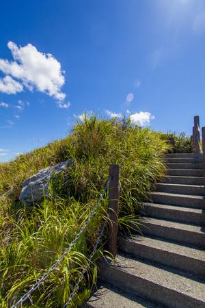 城山(伊江島タッチュー)山頂付近の階段(縦):No.2395