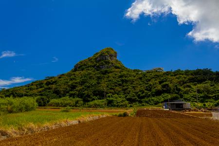 城山(伊江島タッチュー)と畑(横):No.2404