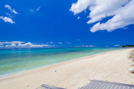 G1ビーチ(横):No.2343