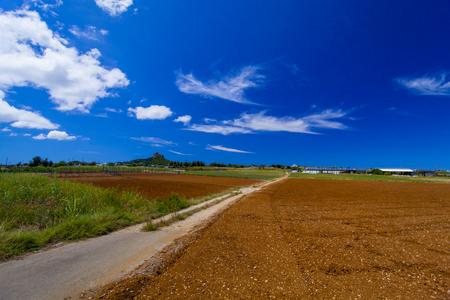 城山(伊江島タッチュー)遠景と畑(横):No.2408