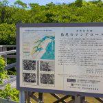 島尻のマングローブ林・案内板(横):No.2942