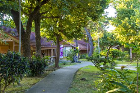 宮古島市熱帯植物園・園内(横):No.2962