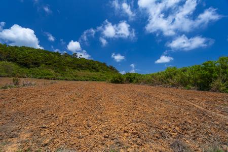 久米島の赤土(横):No.3352