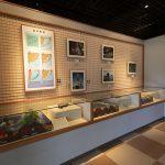 久米島博物館・館内(横):No.3422