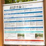久米島・おばけ坂・案内板(横):No.3497