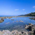 熱帯魚の家・岩場(横):No.3539
