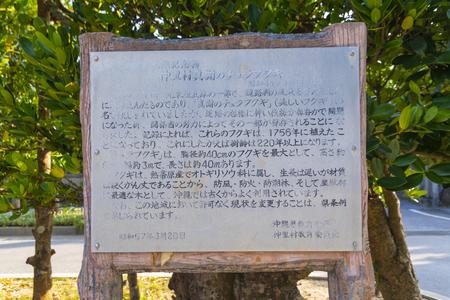 真謝のチュラフクギ・案内板(横):No.3575