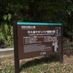 平久保サガリバナ植樹の森・案内板(横):No.3627